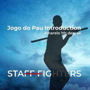 e-learning jogo do pau stafffighters